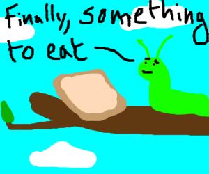 The very hungry caterpillar eats toast