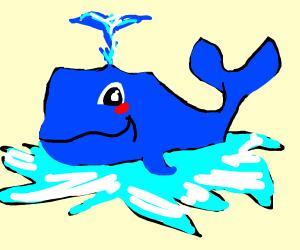 cute whale splashing in water