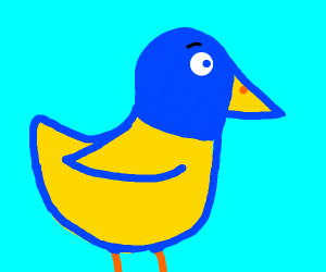Blue and yellow duck
