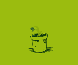 Dying Plant in Sad Jar