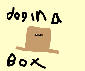 Scraggly puppy in a box, feed him maybe?