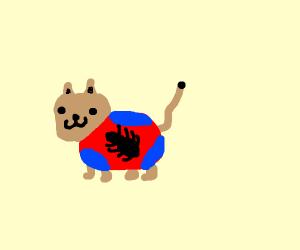 spidercat, spidercat, does whatever
