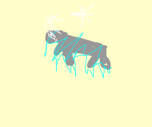 Frozen Manatee