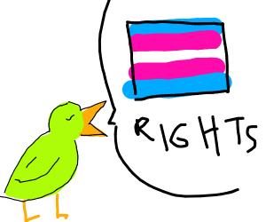 birdo said trans rights!