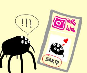 Spider checks his instagram