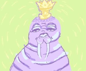 Purple walrus, the king of all walruses