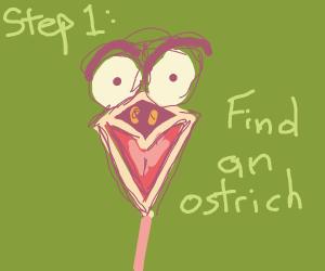 step 2: You Scream At the ostrich