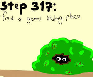 Step 317: find a good hiding place