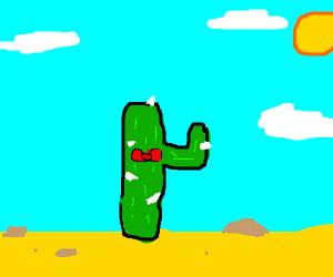 fancy cactus