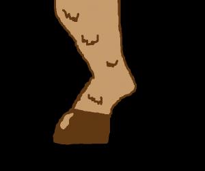 A hoofed leg.