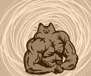 RIPPED cute cat