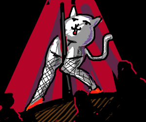 Pole dancing cat with really long legs