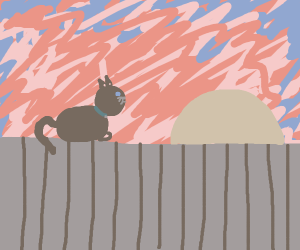 Cat on fence looking at sunset