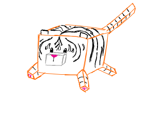 Box-y tiger