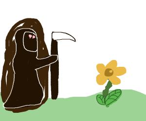Grim loves the flower