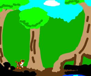 Orange cat in the wild