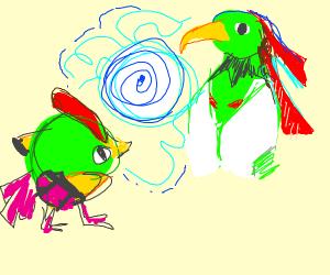 Natu and Xatu hypnotize each other