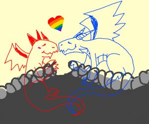 A gay dragon