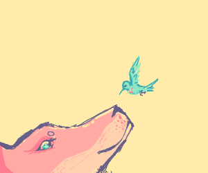 Fox and Hummingbird