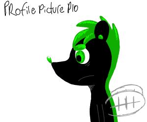 Profile Picture P.I.O