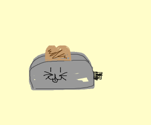 kitty toaster