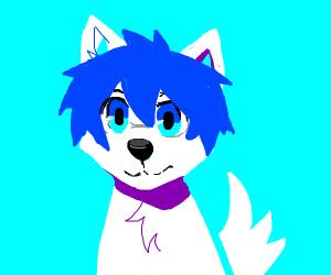 magic dog with blue hair