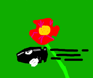 Bullet bill passing by a flower