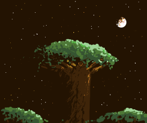 A lone baobab howling in the night