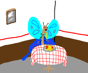 Butterfly finally gets to eat Italian food