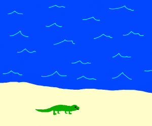 Lizard On Beach