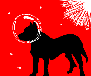 Space Pitbull