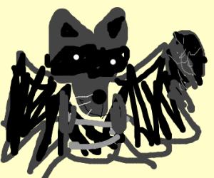 bat raccoon hybrid