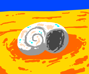 a sea shell by the sea shore