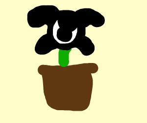 phantom plant