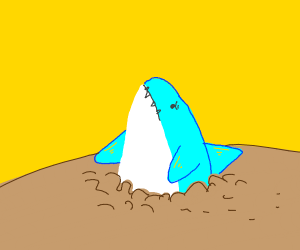 Shark stuck in the dirt