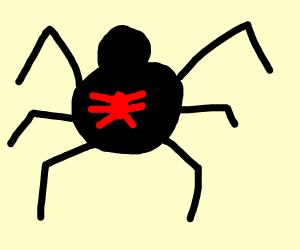 Black Widow (Spider)