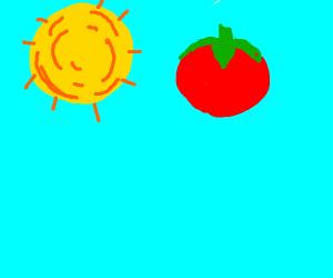 a tomato next to the sun