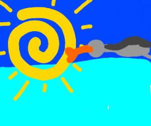 bird kissing the sun