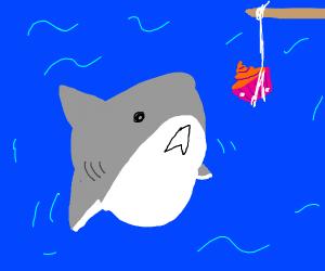 shark eating a cupcake