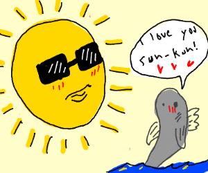 fish x sun