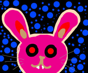 pink rabbit staring into your soul