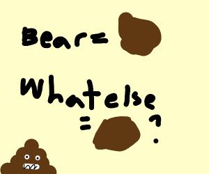 Bear is brown what else is brown?