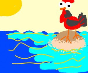 Rooster on an Island