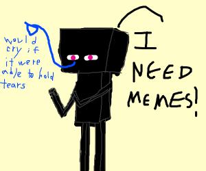 a enderman needs memes :(