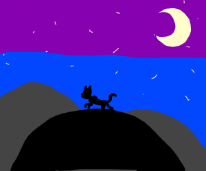 Cat Wanders Into the Night