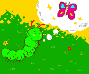 homeless caterpillar wants to be a butterfly