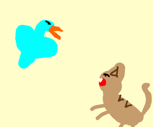 cat v bird... the match of the century!!
