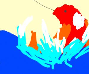 Fishing for koi