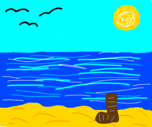 one brown boot on a beach with birds in sky