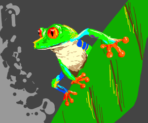 the best, most colourful frog I EVER seen